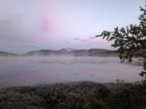 Morgondimma över Öjön
