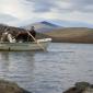 Fishing in Ljungdalen